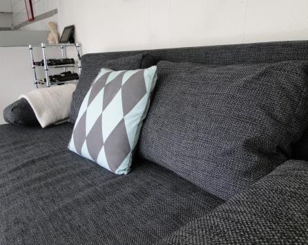 Sleeping sofa in the living room sleeps 2 adults